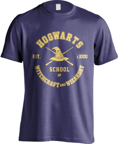 Hogwarts School (Harry Potter)