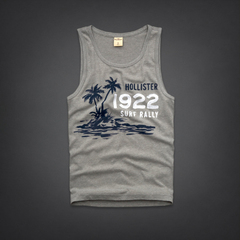 Camiseta Regata Hollister