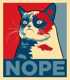 Sticker - Grumpy Cat - NOPE